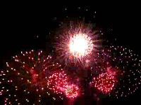 Trending GIF fireworks of july fourth of july july july 4 july fourth Fireworks Gif, Fireworks Pictures, Best Fireworks, 4th Of July Fireworks, Happy Fourth Of July, July 4th, Firework Colors, New Year Images, July Images