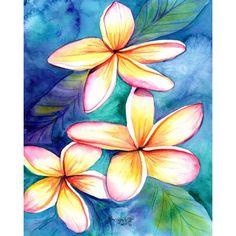 Plumeria print 8x10 from Kauai Hawaii frangipani hawaii art... (535 MXN) ❤ liked on Polyvore featuring home, home decor, wall art, flowers, flower stem, flower wall art, giclee painting, white flower wall art and white home decor