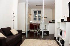 Light cosy studio apartment in the 7th Paris arrondissement   Passage Jean Nicot