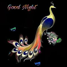 Pankh hote to ud aate r Good Morning Flowers Quotes, Good Morning Beautiful Pictures, Good Night Flowers, Good Night Love Images, Romantic Good Night, Good Morning Picture, Good Night Msg, Cute Good Night, Good Night Wishes
