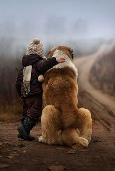 Like a giant fluffy teddy bear