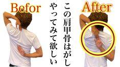 肩甲骨はがしで肩こり解消!バストアップにも効果絶大!キレイな姿勢を作って痩せる! - YouTube Yoga, Videos, Youtube, Youtubers, Youtube Movies