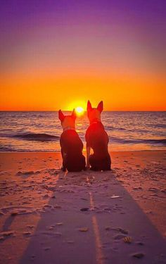 On the beach enjoying the sunset