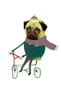 Cycle Pug