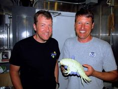 24 déc. 2014 - En explorant la fosse des Mariannes, la plus profonde actuellement connue, une expédition a mis la main sur de nouvelle espèces, dont un poisson blanc et translucide inconnu trouvé à plus de 6000 mètres de profondeur.