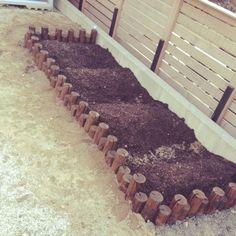 家庭菜園/手作り…などのインテリア実例 - 2014-03-22 07:06:04