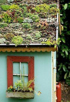 Another living roof garden! #succulent