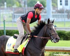 McCraken Looks To Regain Winning Form In G3 Matt Winn Stakes - Horse Racing News | Paulick Report