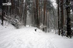 Caminando en la nieve Snow, Creative Photography, Author, Eyes, Let It Snow