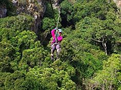 Canopy Tours. Eswatini Adventure Activities | Things to do in Eswatini | Experiences | Swaziland - Dirty Boots