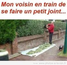 image drole joint