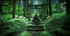 """日本には多くの神社があると言われていますが、そのどれもが素晴らしい雰囲気を持ち、中にはパワースポットとまで呼ばれる場所があります。さらには素敵な景色を見せてくれる場所もあるのですが、今回はその中でも""""神秘的過ぎる""""と話題になっている「上色見熊野座神社」についてご紹介したいと思います。 本当に神秘的すぎます!..."""