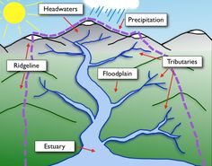 CSERC Watershed Game- learn about what a watershed is and how we can take care of it.