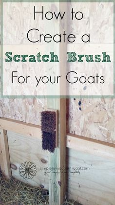 A scratch brush is a great way for goats to get their itch on! Here is an easy and inexpensive way to ad a scratching post to your barn. Keeping Goats, Raising Goats, Goat Playground, Goat Shelter, Female Goat, Goat Pen, Goat Care, Boer Goats, Nigerian Dwarf Goats