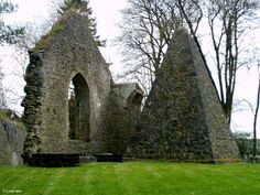 Ireland In Ruins: Kilcooley Abbey Co Tipperary