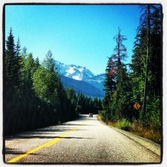 Road Trip through Cariboo Country in Central British Columbia, Canada Cool Places To Visit, Places To Go, Kids Travel Journal, Williams Lake, Canada Travel, British Columbia, Scenery, Country Roads, Adventure