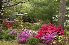 It's easy to visit the Azalea Path Arboretum & Botanical Gardens and be awestruck. Description from visitindiana.com. I searched for this on bing.com/images