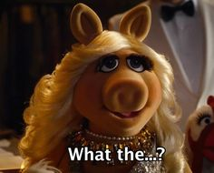 17 Signs You've Found THE ONE As Told By Miss Piggy. Can Constantine successfully fool our ravishing pig? Or will true love prevail? Find out in Muppets Most Wanted, in theaters March Miss Piggy Muppets, Die Muppets, Kermit Gif, Muppets Most Wanted, My Favorite Color, My Favorite Things, Still Love Her, Finding The One, Letting Go Of Him