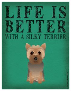 Life is Better with a Silky Terrier Art Print 11x14
