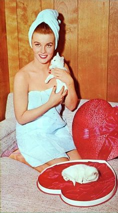 #FamousCats#CelebCats #Ann-Margret with kittens