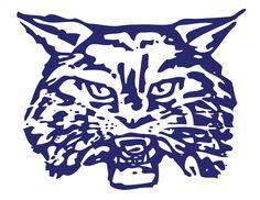 Wilmington High Wildcats!