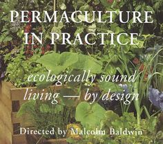 """""""Permaculture in Practice: This video, whose aim is to inspire people to start… Permaculture Farming, Permaculture Principles, Permaculture Design, Growing Greens, Growing Herbs, Small Backyard Gardens, Farm Gardens, Sustainable Energy, Sustainable Living"""