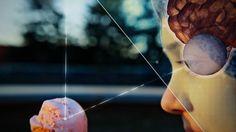MINT erklärt die Welt! Mathematik, Informatik, Naturwissenschaften, Technik - Informatik
