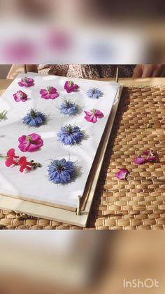 Comment mettre sous presse vos fleurs ? Dried And Pressed Flowers, Fleurs Diy, Nature Activities, Botanical Drawings, Diy Wedding Decorations, Diy Wall Art, Diy Bedroom Decor, Wild Flowers, Art Drawings