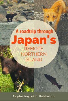 Japan Northern Island