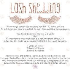 """30 Likes, 1 Comments - Wisp Lash Studio (@wisplashstudio) on Instagram: """"Friendly remind of lash shedding and why booking your fill every 2-3 weeks is necessary  . . .…"""""""