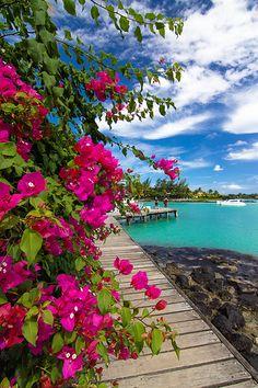 Beautiful Mauritius Island, Thailand #paradise