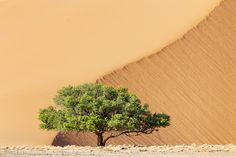 IvanM Namibia by Ivan Muller - Photo 86356193 - 500px