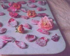 teaspoons & petals   blog post
