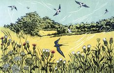 'Bayfield Swallows' linocut by Niki Bowers 18 x 28 cm Linocut Prints, Art Prints, Sea Pictures, Nature Artists, Woodland Creatures, Wildlife Art, Woodblock Print, Amazing Nature, Contemporary Art
