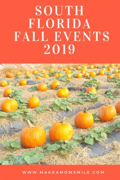 Where has this year gone? I can't believe we are already in October and it is almost time for all the Fall Fun South Florida has to offer. From hayrides to Pumpkin patches and Halloween event…