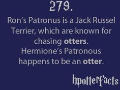 HPotterfacts 279