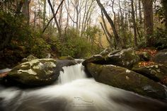 I had the distinct pleasure of visiting Great Smoky Mountains National Park a couple weekends ago. While the trip involved a 12 hour drive down, tenting in temperatures into the 20s, and 2 days of solid rain and snow, the park was as beautiful as I could have hoped for. We were able to witness these lovely waterfalls, gorgeous fall color, and the unexpected snow fallen onto that fall color.