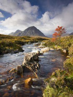 A Stream Runs Through an Autumnal Rannoch Moor Towards Buachaille Etive Mor, Highlands, Scotland Photographic Print by Adam Burton