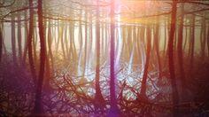 Interpretation of brain neurons - Alexey Kashpersky