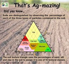 Soil Types Blank And Place Weathering Different Soil Plant Science, Earth Science, Ag Science, Science Facts, Farm Facts, Soil Improvement, Teaching Biology, Garden Soil, Gardening