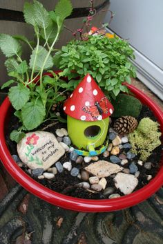 Fairy Garden   Great gifts for End of Year Teachers gifts, Mother's Day, or just because.