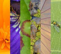 Vermont Photography, Web Design and Print Design - Larissa K Design