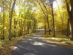 This scene is all too familiar.  Camping and hiking as a kid, and still today.  Iowa in autumn.