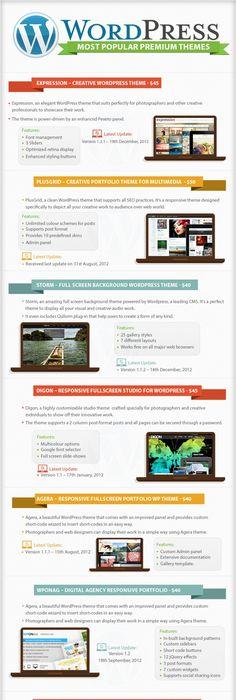WordPress Essentials – Top Themes & Plugins   Infographic Confira ...