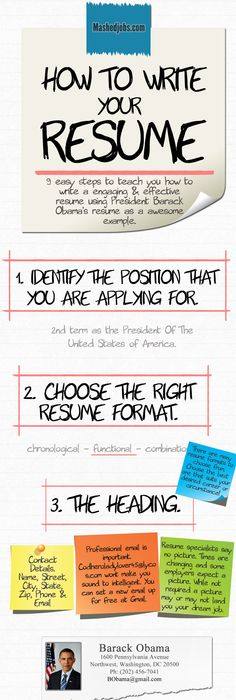 Anatomy Of An Outstanding Resume Infographic  Anatomy