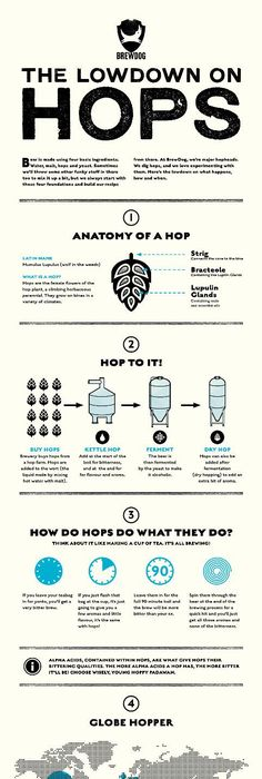 Beer keg sizes for when it matters   Beer   Pinterest   Beer keg ...