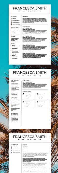 Resume Template  Page  Cv Template By Thetemplatedepot On