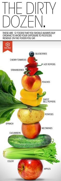 This is the REAL food pyramid You know - the one that wasnu0027t paid - best of blueprint diet food list
