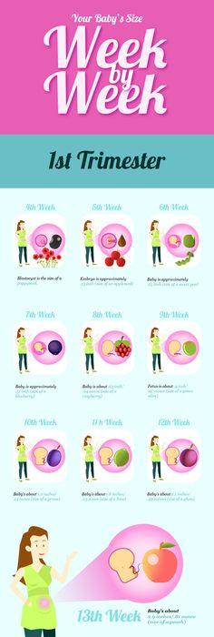 Pregnancy Calendar Week 36 Weekly pregnancy calendar, Pregnancy