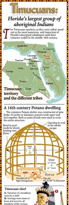 the timucua indians essay Hernando de escalante fontaneda, a shipwreck survivor who lived with the indians of southern florida from 1549–1566 and was rescued from the calusa by pedro menéndez de avilés, described tocobaga, abalachi and mogoso (mocoço) as separate kingdoms from the calusa.